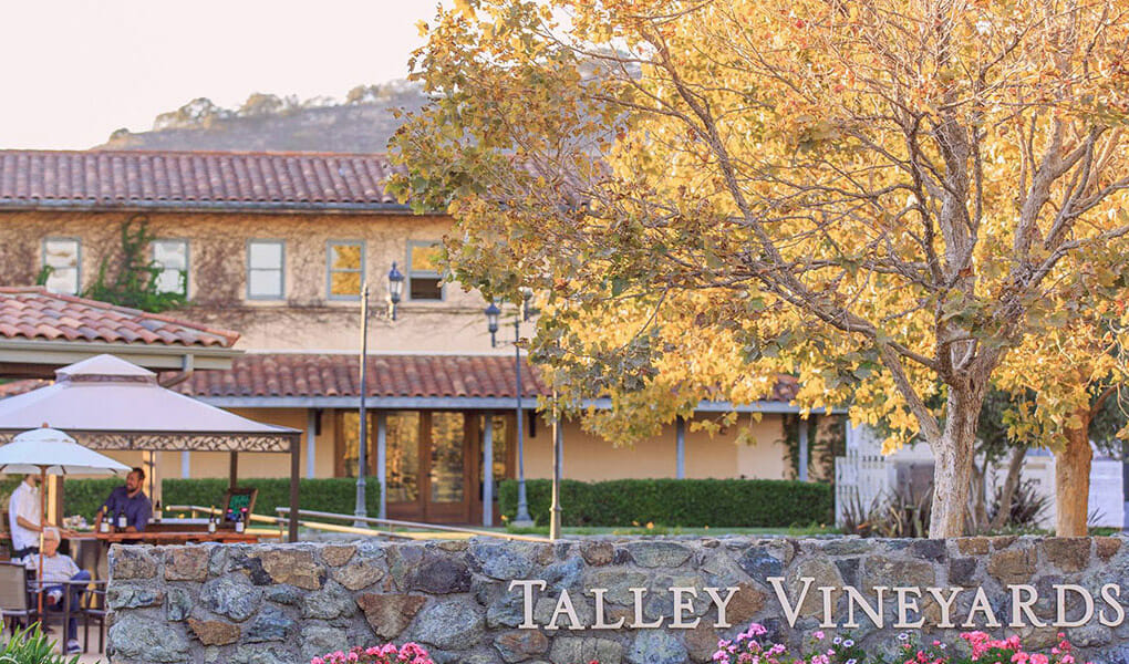 Talley Winery on the SLO Coast